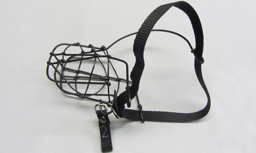 Wire Coated Whippet Muzzle for the smallest Greyhound